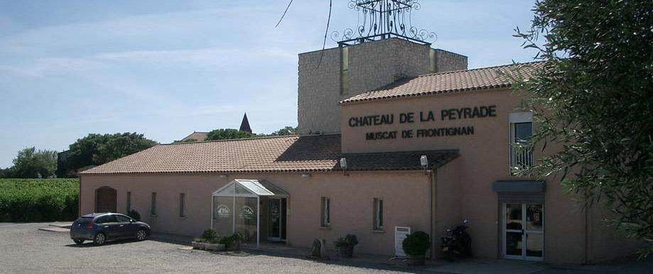 Frontignan Muscat Ch 226 Teau La Peyrade